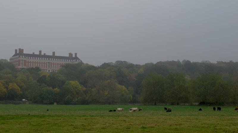 Surrounding Richmond Park is a protected area.